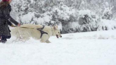 Woman Running In Snow — Vídeo stock