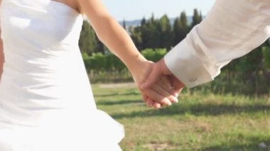 Wedding couple walking in the vineyards — Stock Video