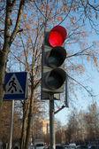 The traffic light — Foto Stock
