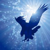 Sunflare eagle — Vector de stock