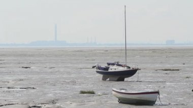 Sailboats at low tide — Stock Video