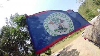 ベリーズの旗は風に吹かれて — ストックビデオ