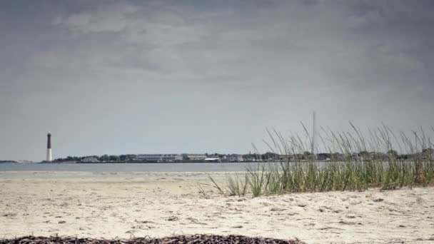 Barnegat Lighthouse from the beach — Vidéo