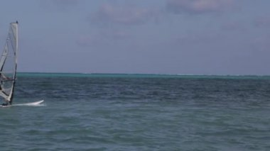 An unidentified windsurfer sails in Belize — Stock Video