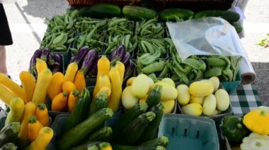Farmers market vegetables for sale. — Stock Video