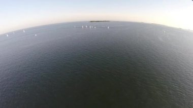 Fleet of sailboats in open water aerials — Stockvideo