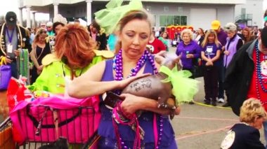 Krewe of Barkus and Meoux pet parade — Stock Video