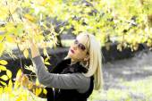 Fall, the woman holds with hands a branch with golden leaves — Stock Photo