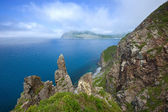 High, steep cliffs of the island Askold. — Stock Photo