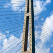 Pylon cable-stayed bridge against the backdrop of a cloudy sky. — Stock Photo #73714275