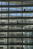 City hall The Hague — Stock Photo