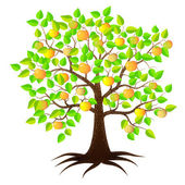 Apple tree with bright green leaves — Stock Vector