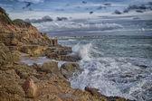 Natural breakwater — Stock Photo