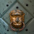 The close-up of an old door handle in a shape of lion head — Stock Photo #64792241