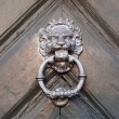 The close-up of an old door handle in a shape of lion head - Stock image — Stock Photo #67167655