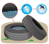 Nature, tires with stagnant water with fly breeding mosquitoes. Ideal for informational and institutional sanitation and related care — Stock Vector