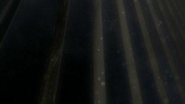 Moving dark bars — 图库视频影像