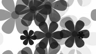 Grey floral pattern — Stock Video