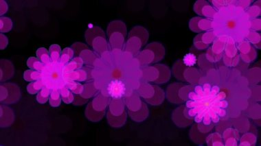 Bright floral pattern — Stock Video