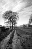 Monferrato hilly region in wintertime. Black and white photo — Stock Photo