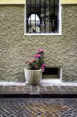 House facade with flowers pot. Color image — Stock Photo