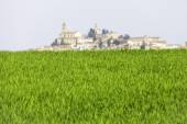 Typical Monferrato village, behind a meadow . Color image — Stock Photo