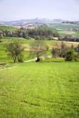 Monferrato panorama, springtime. Color image — Stock Photo