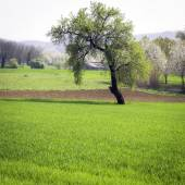 Panorama de Monferrato, printemps. Image en couleur — Photo