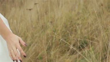 Bride walking through and touching tall grass with her hands. Close-up, flying c — Stock Video