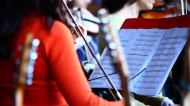 Symphony orchestra at the concert — Stock Video
