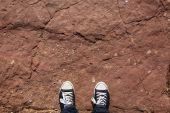 Waiting on asphalt — Stock fotografie