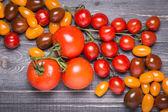 Various tomatoes — Stock Photo