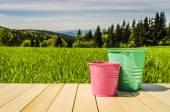 Garden buckets on wooden table — Stock Photo