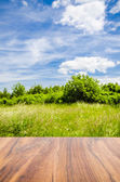 Empty wooden table with landscape background — Stock Photo