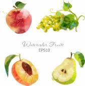 Watercolor fruits set — Stock Vector
