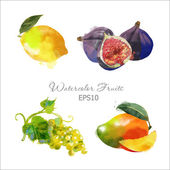 Watercolor fruits set — Wektor stockowy