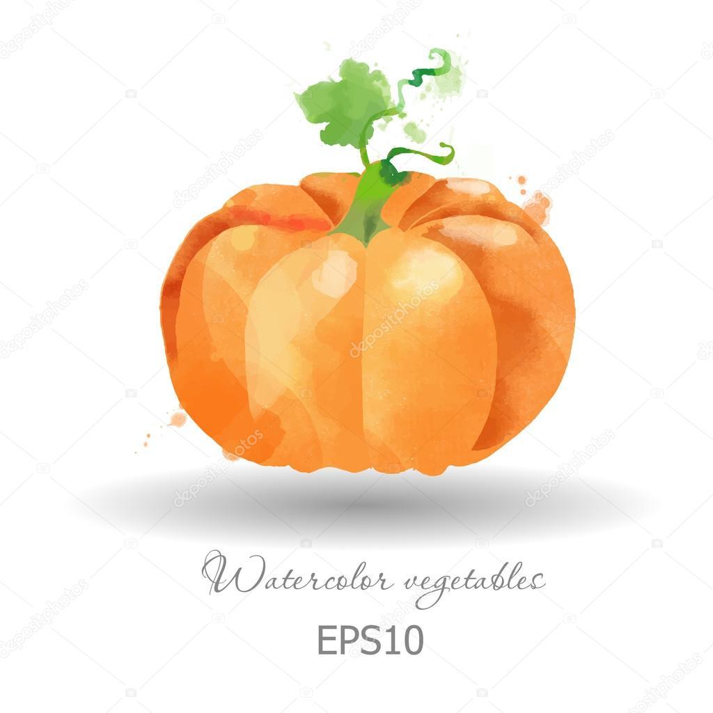 depositphotos_63654155 stock illustration watercolor pumpkin background