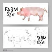 Pig Farm Animal — Stock Vector