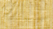 Papyrus type paper texture use as background — Stock Photo