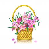 Basket  with orchids — Stock Vector
