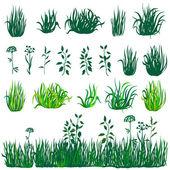 Green grass collection — Stock Vector