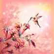 Watercolor colibri and flowers — Stock Vector #64629241