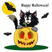 Chat de dessin animé Halloween — Vecteur