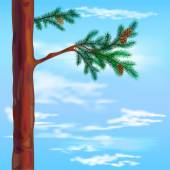 Pine and sky background — Stock Vector