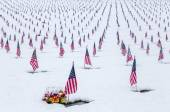 Veteran Cemetery displaying US flags over a fresh Snow Fall — Stock Photo