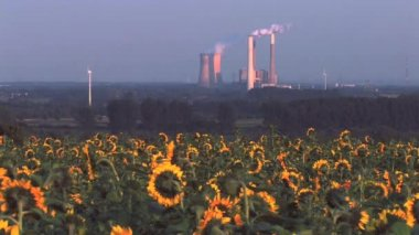 Uhelné elektrárny — Stock video