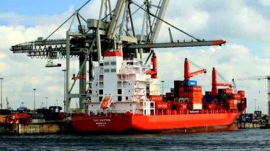 Container ship in Hamburg Harbor — Stock Video