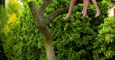 Boy and girl on tree using tablet — Stock Video