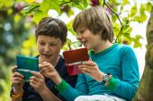 Two boys on tree playing games — Stock Photo