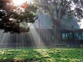 Sunrays on a Misty Morning — Stock Photo